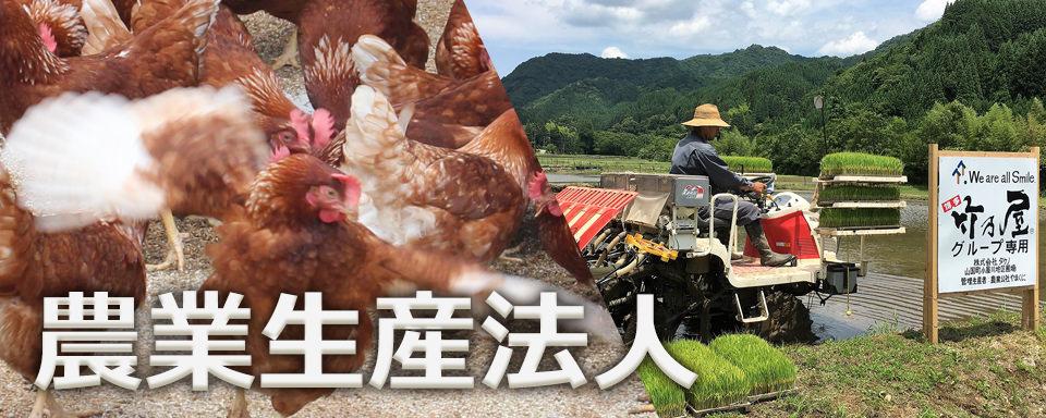 農業生産法人